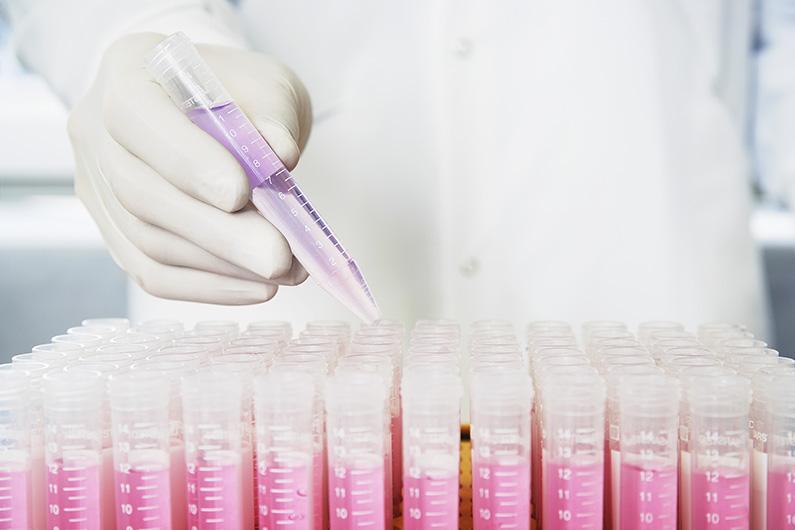 Cancer et génétique