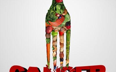 L'alimentation équilibrée, ça semble tellement compliqué