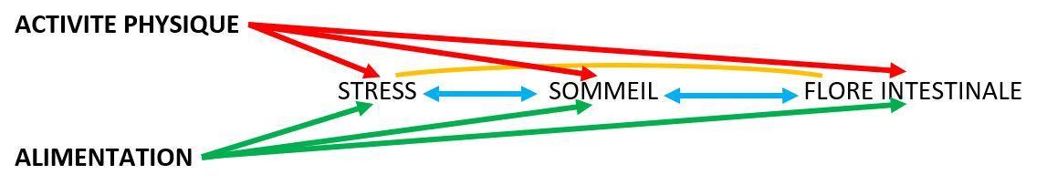 stimulation immunitaire