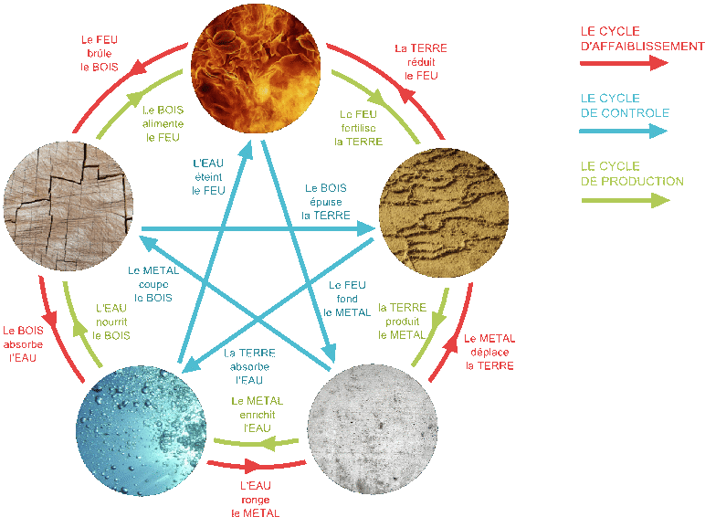 Schéma d'équilibre entre les 5 éléments